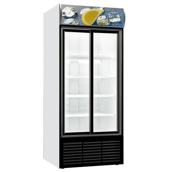 Külmkapp klaasist liugustega 880x711x2000mm
